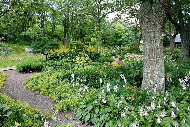 jak zaprojektowac ogród przed domem