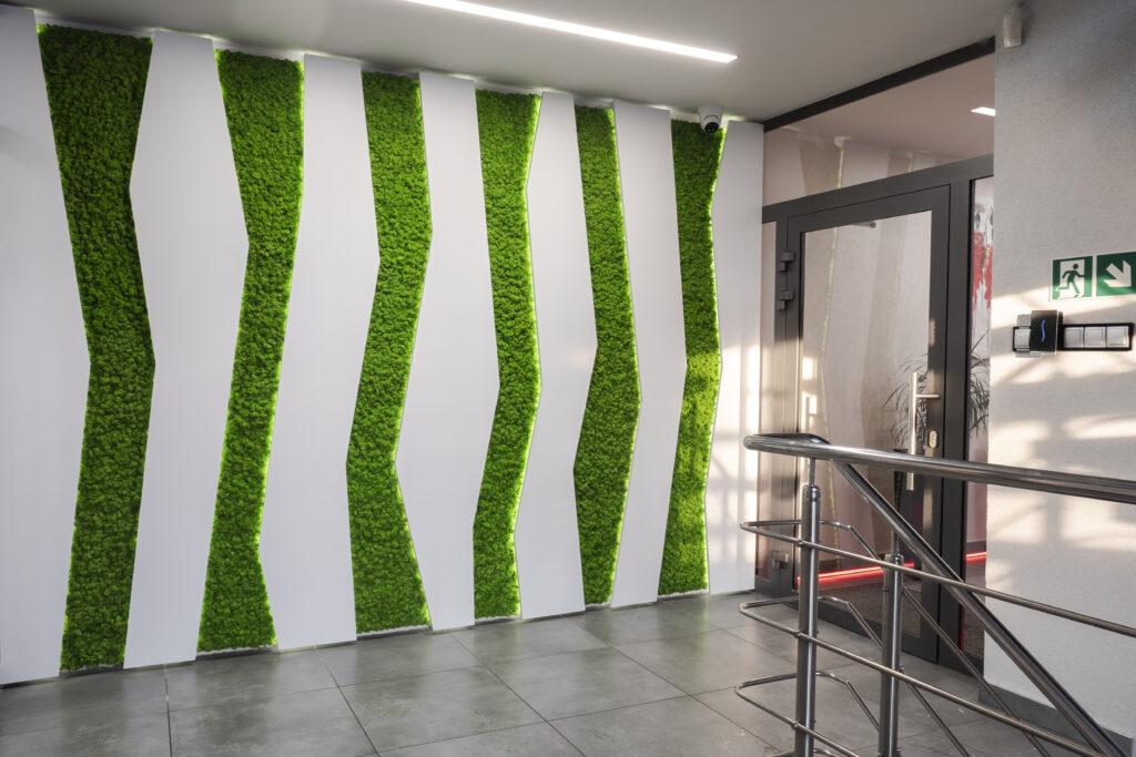 zielona ściana z mchu